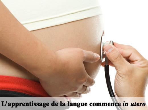 Stetho-enceinte