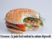 Grossesse et junk-food